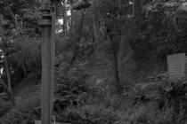 Erlebnis-Eisenbahn_17