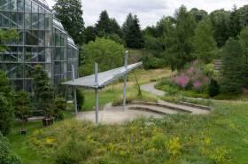 Exkursion Botanischer Garten
