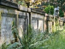 OTT_Friedhof_5