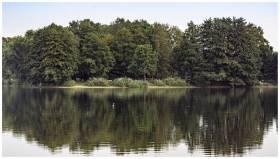 Exkursion Rubbenbruchsee