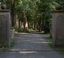 Bürgerpark_3