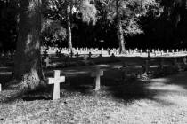 Johannesfriedhof_7