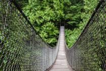 15 Hängebrücke im Lynn Canyon Park nördlich von Vancouver