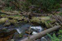 Ilse-Wasserfall_7