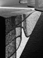 Monatsthema Schatten