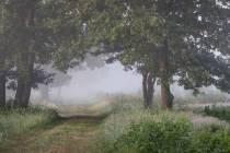 CHK-Venner Moor-9_#