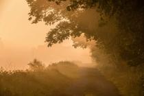 CHK-Venner Moor-8_#