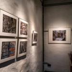 Füchse-Ausstellung 02