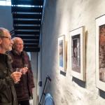 Füchse-Ausstellung 03