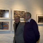Füchse-Ausstellung 05